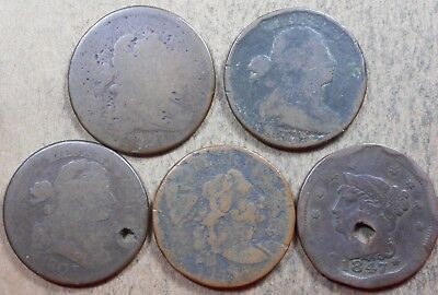 Set of 5 Flowing Hair, Draped Bust & Braided Hair Large Cents, Rare coins! c508