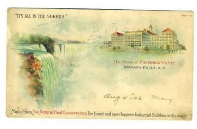 The Home of Shredded Wheat Postcard 1906 Niagara Falls Conservatory