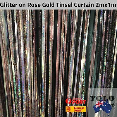 1x2m Rose Gold Glitter Holographic Tinsel Curtain Party Event Decor Birthday