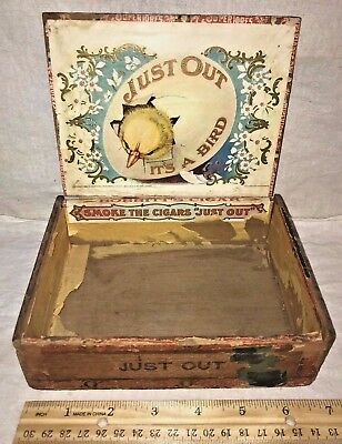 Antique Wood Cigar Box Vintage Tobacco Just Out Its A Bird Chick Chicken Egg Old