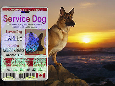 Holographic Service Dog ID Card, Canadian Service Animal ID Tag, Service Dog Tag