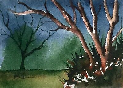 ACEO Original Art Watercolour Painting by Bill Lupton  - Evening Time