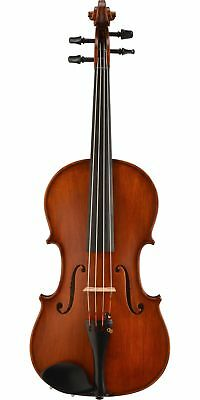 Bellafina Roma Series Viola Outfit 15-inch