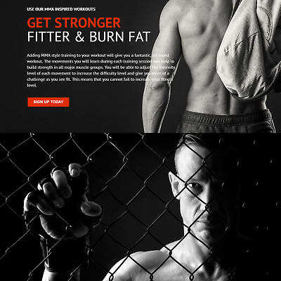 MMA Workout Internet Website Business For Sale Mens & Womens Fitness Training