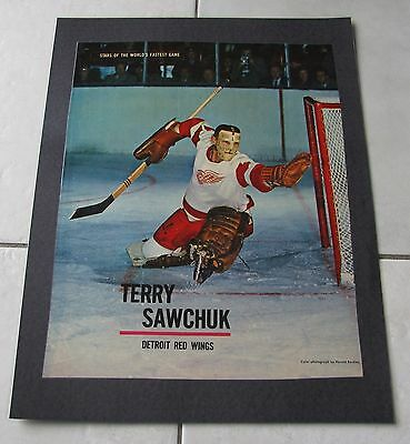 STAR WEEKLY LOT OF TEN NHL HOCKEY PICTURES 50's/60's LAMINATED ON POSTERS / NICE