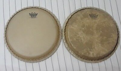 "Remo Conga DrumHead/Size 11""/Percussion/Parts&Accesories/Heads"