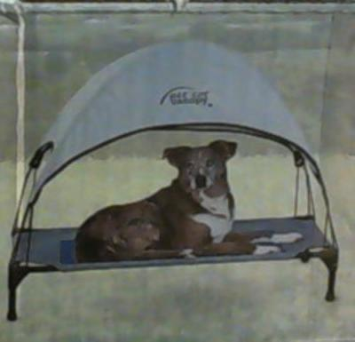NEW OPEN BOX K&H Manufacturing 30 by 42-Inch Pet Cot Canopy, Large, Gray