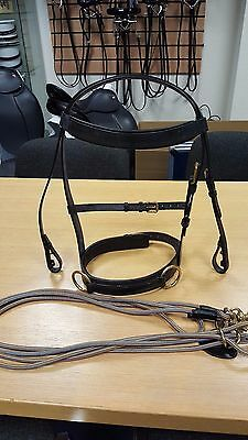 Full Size Leather Lunge Cavesson including Slip & Cheek and Lunging Rope