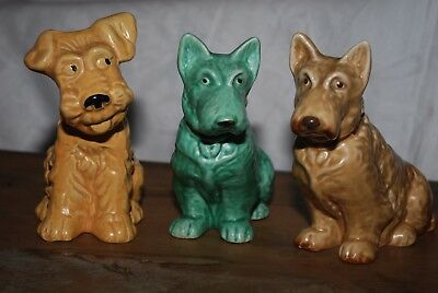 Superb Collection Of 3 Sylvac Pottery Terrier Dogs 2 Mold 1205 1930/40's/50's
