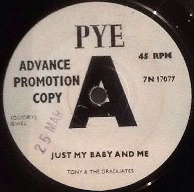 TONY & The GRADUATES - Just My Baby And Me. UK Pye Demo 45'. 1966 Rock Pop