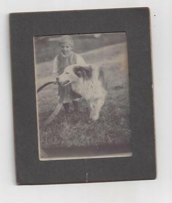 antique PHOTO Boy and DOG playing with HOOP Brooklyn NY