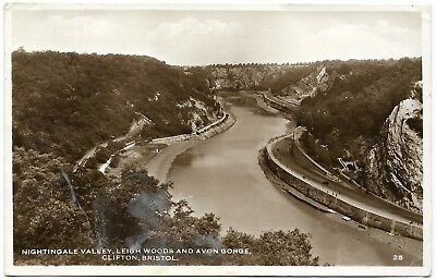 Nightingale Valley Leigh Woods Avon Gorge Clifton Bristol real photo - 1958