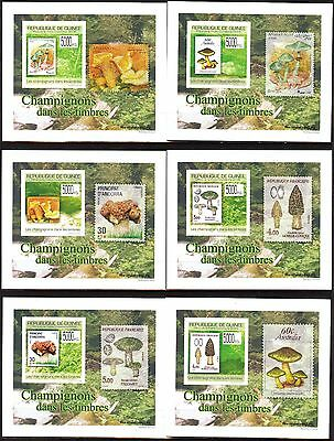 {G04} Guinea 2009 Mushrooms Stamps on Stamps 6 S/S DeLuxe MNH**
