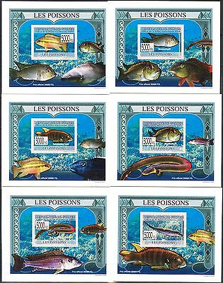 {G10A} Guinea 2009 Fishes ( 2 ) 6 S/S DeLuxe MNH**