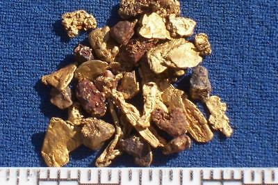 Yukon Gold Nuggets 2.00 Grams +6 (416)
