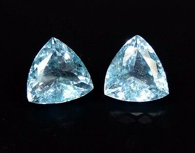 Bright Pair 12.75 Cts. 100 % Natural Blue Topaz Trillion Cut For Silver Earrings