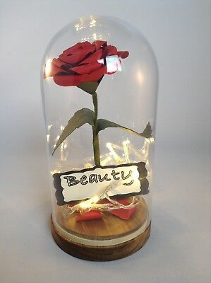 Beauty And The Beast Rose In Dome