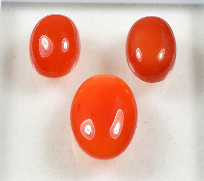 24.25 Cts. 100% Natural 3 Pcs. Set Of Carnelian Untreated Cab Loose Gemstones