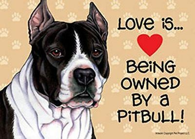 "Love is… being owned by a Pitbull (Black and white) 5"" x 7"" Plastic Dog Sign"
