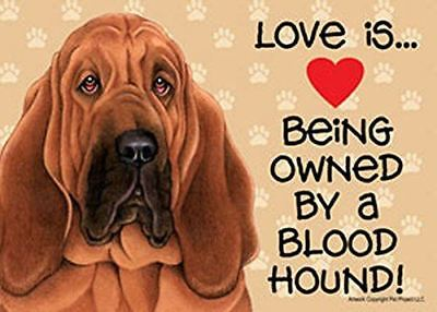 "Love is… being owned by a Bloodhound 5"" x 7"" Plastic Dog Sign"