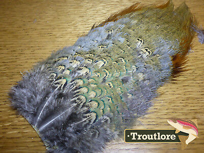 Nature's Spirit Ringneck Pheasant Rump Patch Feathers - New Fly Tying Materials