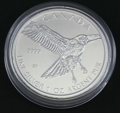 2015 1 oz Canadian Silver Red-Tailed Hawk Coin 9999 AG