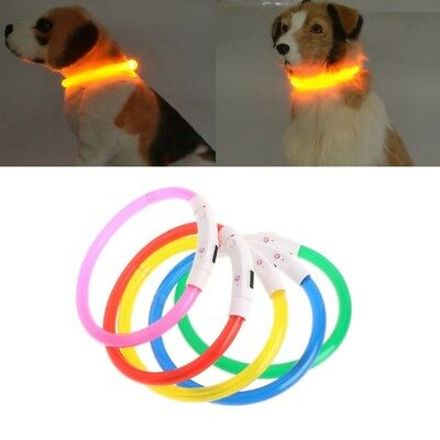 Rechargeable Pet Collar USB LED Light Band Waterproof Dog Safety Collar Belt Hot