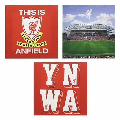 Liverpool FC LFC 3 Pack Canvas Official