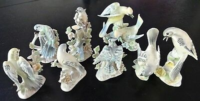 Ardalt Lenwile Large Collection of Vintage Porcelain Birds Rarely Seen Set of 8