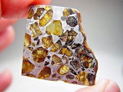Museum Quality! Amazing Crystals! Beautiful Brahin Pallasite Meteorite 12.5 Gms