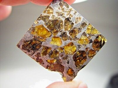 Museum Quality! Amazing Crystals! Beautiful Brahin Pallasite Meteorite 16.7 Gms