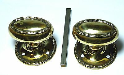 Pair Quality Antique Brass Oval Regency Style Door Handles Knobs Fixed Backplate