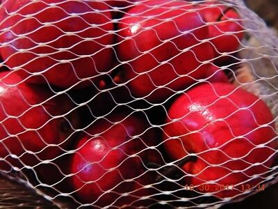 MESH BAG OF 30 FAUX APPLES 35mm 4 COUNTRY, TEACHER, CHRISTMAS TREE, HOME DECOR