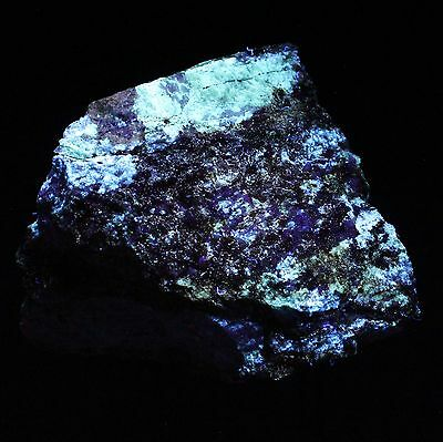Rare Fluorescent Edenite & Diopside / N.y. Type Locality, Large Display!!  #2564