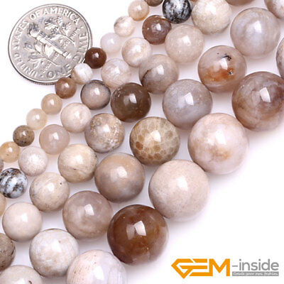 """Natural Gray Ocean Fossil Agate Round Loose Spacer Beads For Jewelry Making 15"""""""