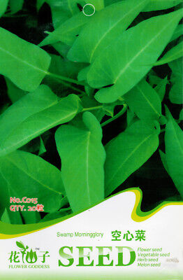 20 Seeds/Pack Cabbage Seeds Water Spinach Organic Original Pack C015