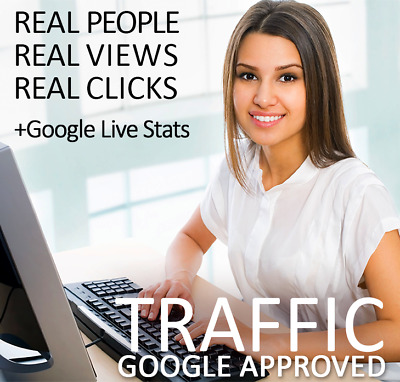100,000 views for your website real web traffic 100K UNIQUE views + Live Stats