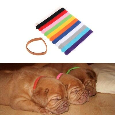12Pcs Pets Puppy Collars Adjustable Soft Identification Mark For Cats Dogs