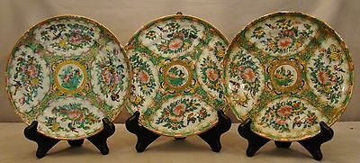 """Set of 3 Antique Chinese Export Rose Canton Plates 7 7/8"""" dia 19th c"""