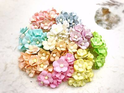 100 pcs. Multi-Coloured double layers paper daisies mulberry paper flowers#2