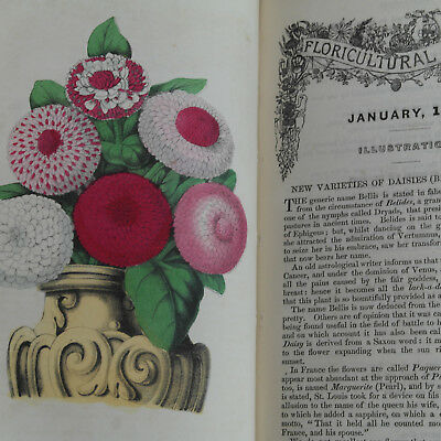 1851 The FLORICULTURAL CABINET with 12 Color Illustrations Antique Book