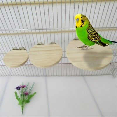 Small Animals Pet Birds Springboard Toys Anti Bite Semicircle For Hamster Parrot