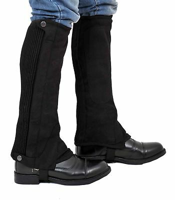 Riders Trend  Washable Amara Plain Synthetic  Suede Half Chaps Black X-Large