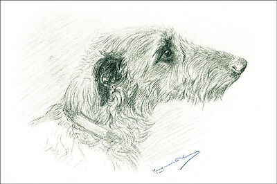 Irish Wolfhound Dog 1932 by Marguerite Kirmse  ~ LARGE New Blank Note Cards