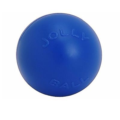 Jolly Pets Push-N-Play Ball Blue 6 inch | Hard Plastic Chew Toy for Dogs