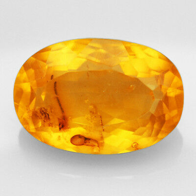 8.05CT Baltic Golden Amber With Insect Faceted Pear Cut Natural UQFP155