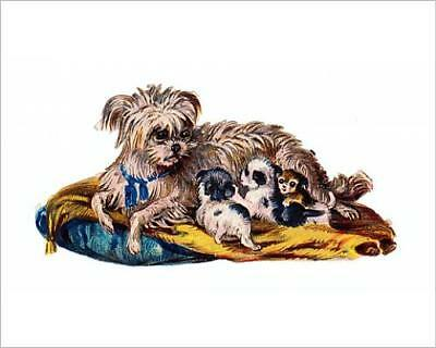 """10""""x8"""" (25x20cm) Print of Dog with puppies on a Victorian scrap"""