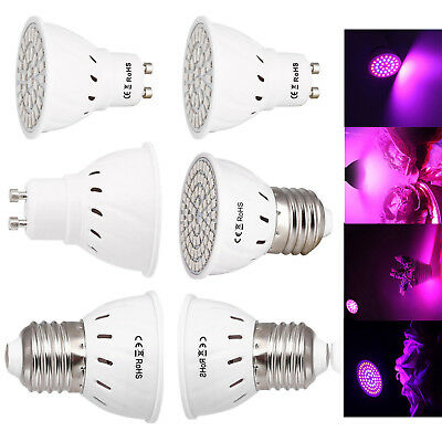 LED Grow Light Bulb 10W 8W E27 GU10 Bulb 5733 2835 SMD Lamp For Plant Hydroponic