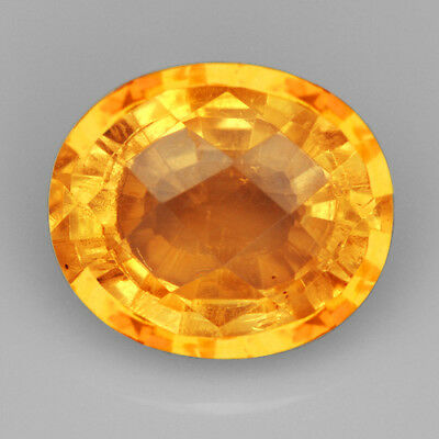 17.05CT Baltic Golden Amber Insect Faceted Pear Cut Natural UQFP154