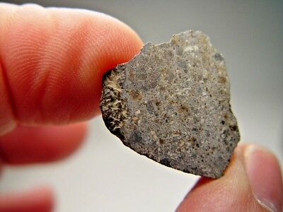 Great Deal! Fabulous Cut Face Fragment! Super Smara Meteorite With Crust! 8 Gms